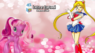 Sailor Moon nel film My Little Pony del 2009